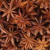 100kg Aniseed star Essential Oil (Illicium verum), Anise Star Oil, Star Aniseed Oil, CAS 68952-43-2, FEMA 2096, EINCES 283-518-1