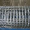 Galvanised welded wire mesh netting