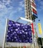 PE color series masterbatch Purple