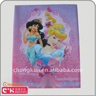 3D disney princess folder