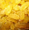 golden raisins,sultana raisins prices