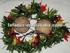 flower coconut bra