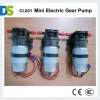 CL001 Mini Electric Gear Pump