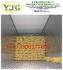2012 100% nature fresh ginger no pesticide