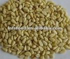 Organic Pine Nut Kernels