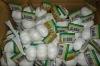 New crop! Pure White And Normal White Fresh Garlic