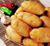 fresh potato of China 2012