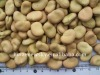 Chinese Broad Beans