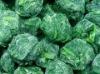 IQF Spinach Balls
