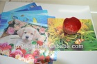 animal design tourist souvenirs 3D lenticular dining table mat, 3D promotional gifts & premiums table mat