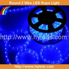 Round 2 wire LED String Light Blue Color