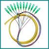 12 core fiber pigtail