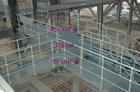 Xinxing Steel Grating_Platform&Floor