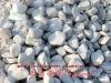 natural pebble stone paver / refined white pebble stone