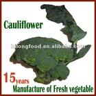 2012 (11-13cm ) chinese fresh broccoli