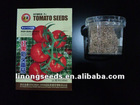 Red stone Tomato seeds (569)