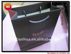 2012 Fashion Paper Hand Carry Bag For Shopping