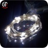 Indoor Led Decorative Light