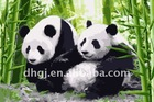 Giant pandas menglei painting by numbers