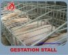 New type galvanized pipe single pig gestation stall