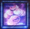 Mydarb - crystal light box