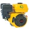 Gasoline Engine (EG200G)