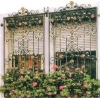 WH-163D 2012 Amercian Graceful and Beautiful metal Window Grills