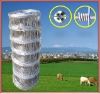 stainless steel hinge joint knot field fence
