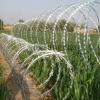 lowest price galvanized Razor Barbed Wire