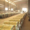 Hot rolled ppgi iron coil