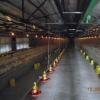 Plastic slat floor for chicken house,poultry farming equipment