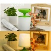 2011 hot new edition New Solar Gift sun jar solar light lamp