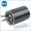 Micro Motor (L-6495)