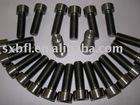 Titanium DIN912 Hexagon socket head cap screws