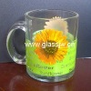 coffee mug glass cup/ tea cup