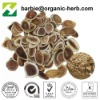 Pure natural Deer Antlers Extract