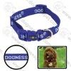 """Eco-friendly dog collar 5/8""""*10-16"""""""