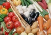Export seasonable fresh vegetables