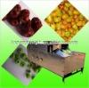 automatic cherry/jujube pitter
