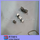 Special shaped neodymium magnets