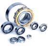 cylindrical roller bearings (N202--N215)