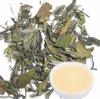 organic white tea ,top quality white tea,silver needle white tea