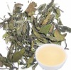 organic white tea ,top quality white tea,silver needle white tea