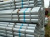 Hot-dipped galvanized pipe