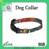 colorful fashionable dog collar pet collar with heat transfer logo