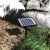 Solar Panel (GSP2-12)