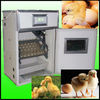 best-selling eggs incubators for sale
