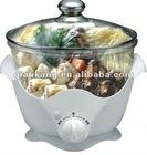 Slow cooker/Mini cooker