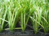 hot selling soccer field turf artificial turf for sale