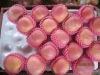 HOT SELLING Chinese fuji apple
